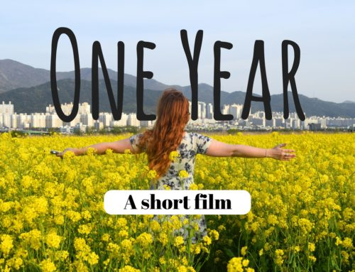 7 countries in one year || A Short Film
