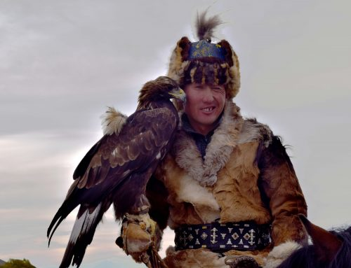 Video: Golden Eagle Festival!